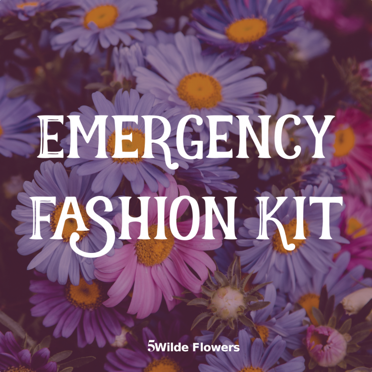 Be Prepared For The Unexpected With An Emergency Fashion Kit